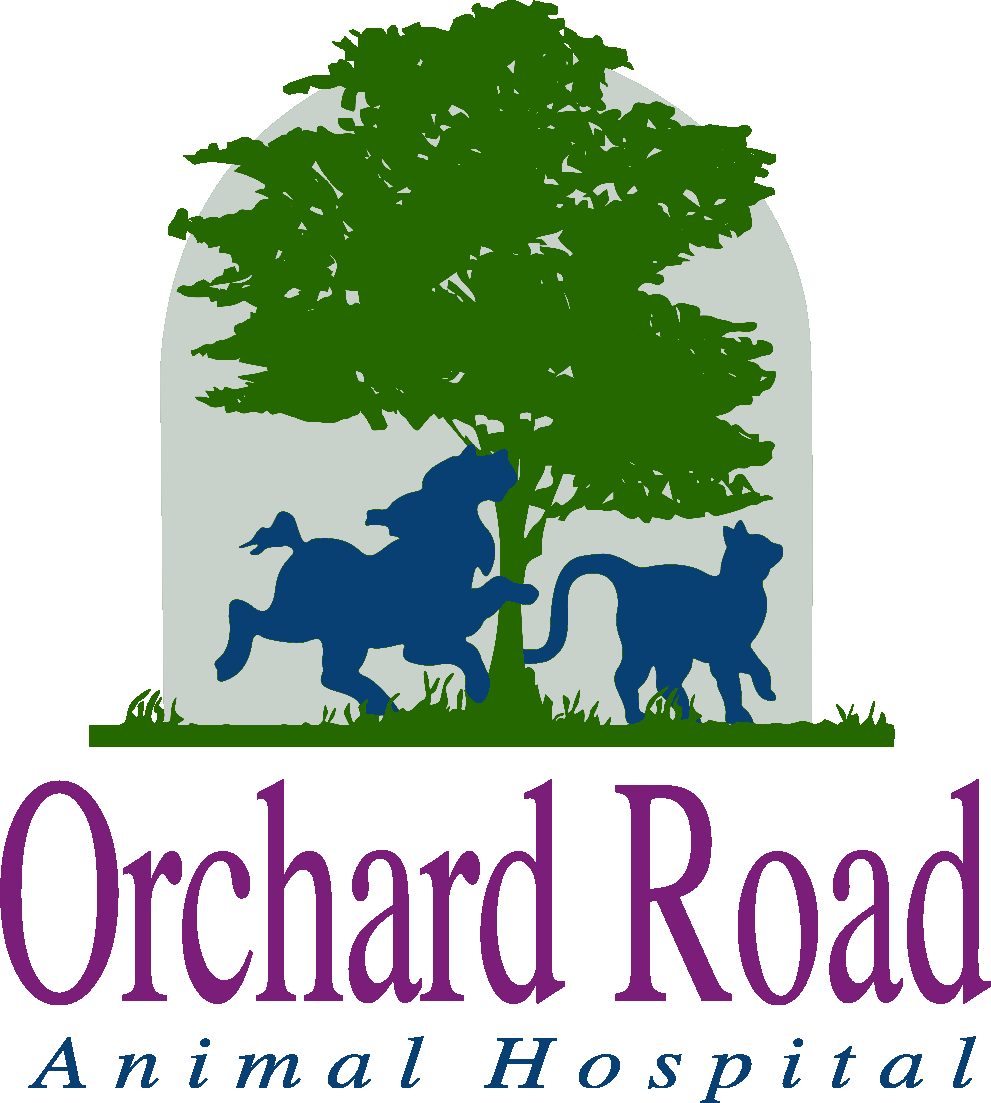 Orchard Road Animal Hospital